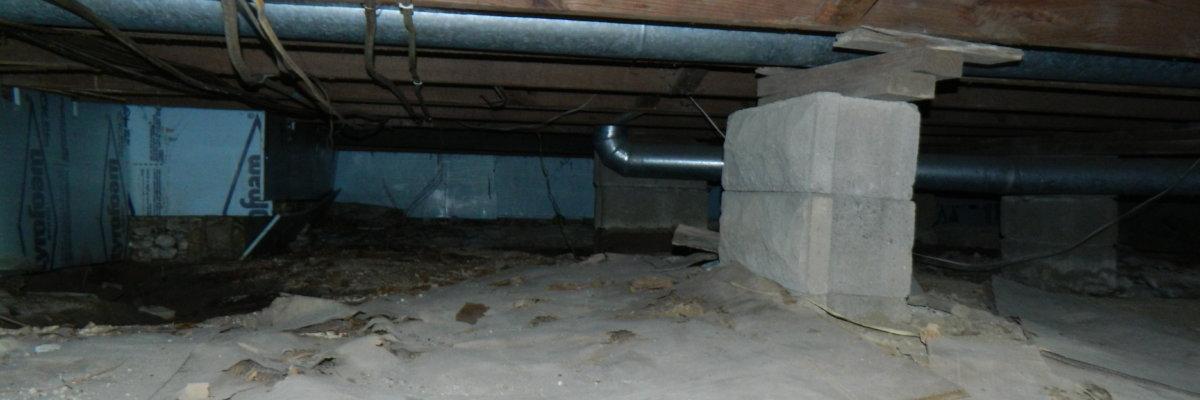 Dry Otter Waterproofing   Crawl Space Debris   Crawl Space Encapsulation